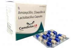 camdiclox_lb_new