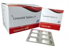 lizocam